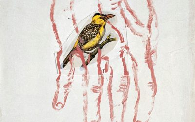 Rimbaud, l'œuvre