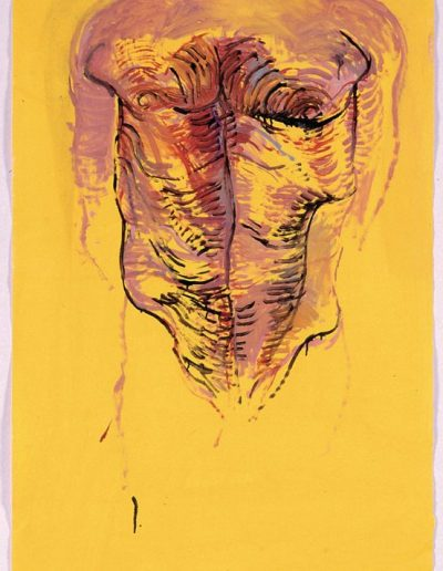 Torse, 2005
