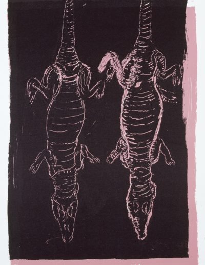 Crocodiles, 2003